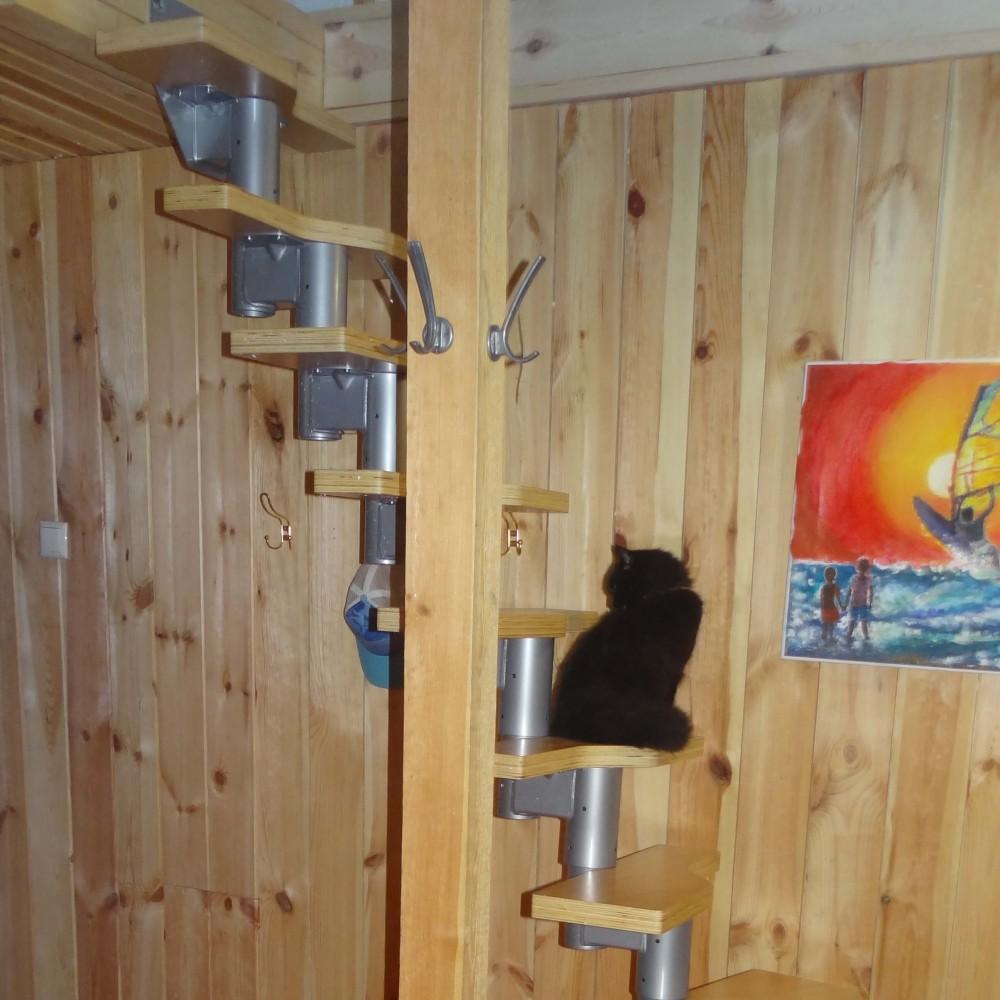 Фото Модульні сходи DOLLE Athena в квартирі